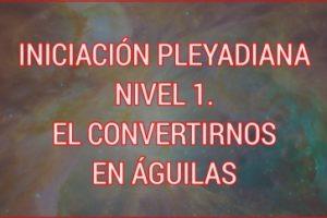 INICIACIÓN PLEYADIANA NIVEL 1. EL CONVERTIRNOS EN ÁGUILAS